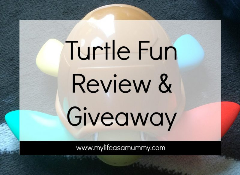Turtle Fun Review