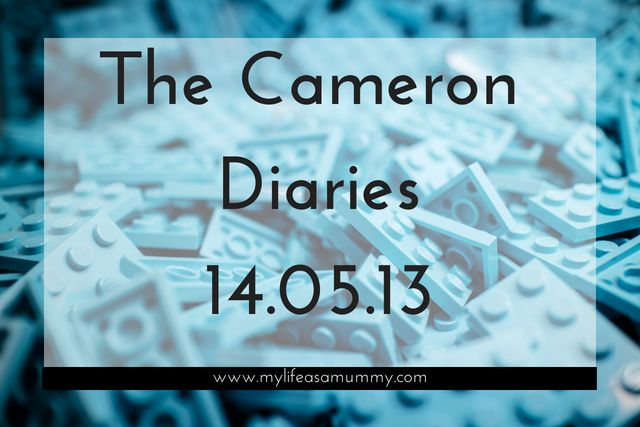 The Cameron Diaries